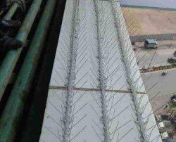 Polycarbonate-pigeon spikes@ RaddissonBlue