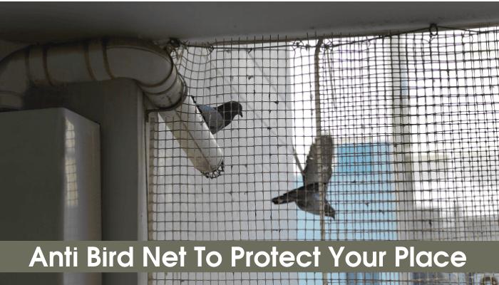 bird net dealer in jaipur